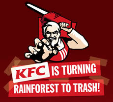 KFC no good for rainforests